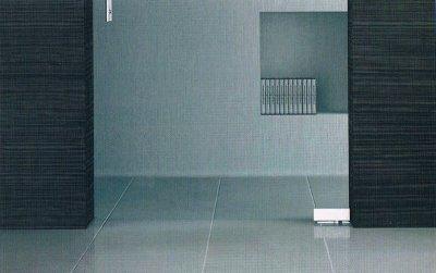 画像2: 【特別企画第3弾】ソフトクローズ付きピボット丁番ガラスドアセット