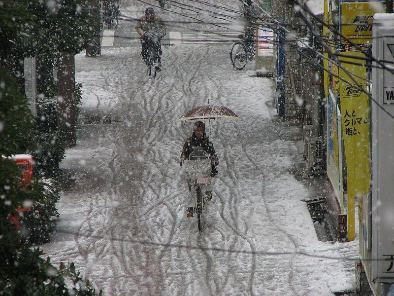 雪の道を傘を差し自転車で道行く人(大阪)