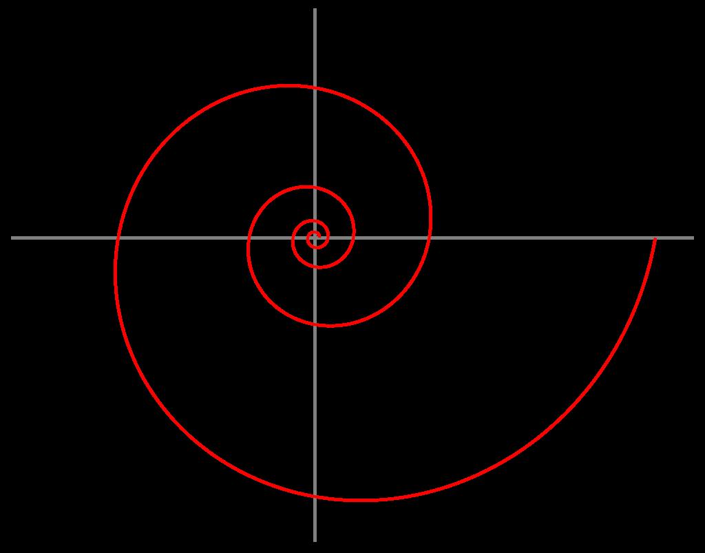 自然界に多く見られる渦巻(対数螺旋)